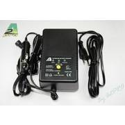 Chargeur rapide Delta Peak - 1A à 2A - NiMH / NiCd - 12V / 220V
