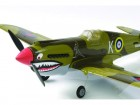 P40 WARHAWK 2.4 LNF (Photo 6)